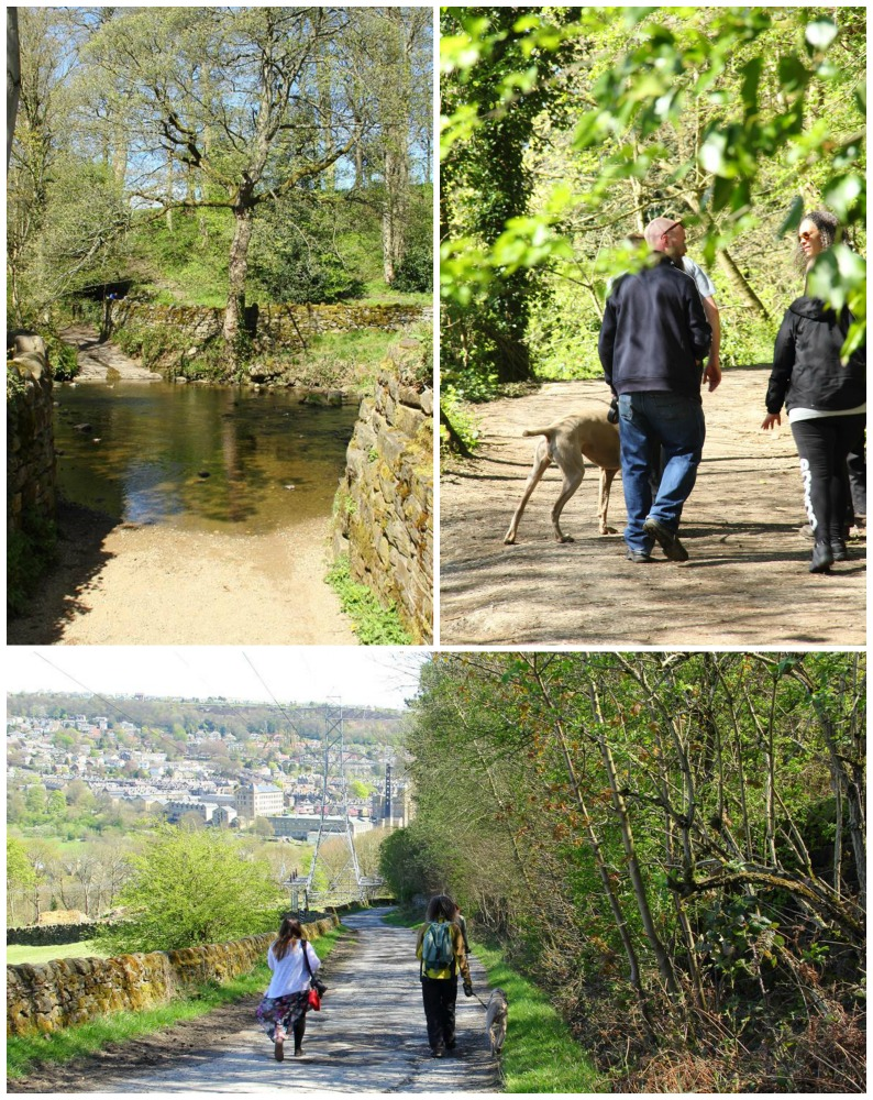 Walking in Bingley