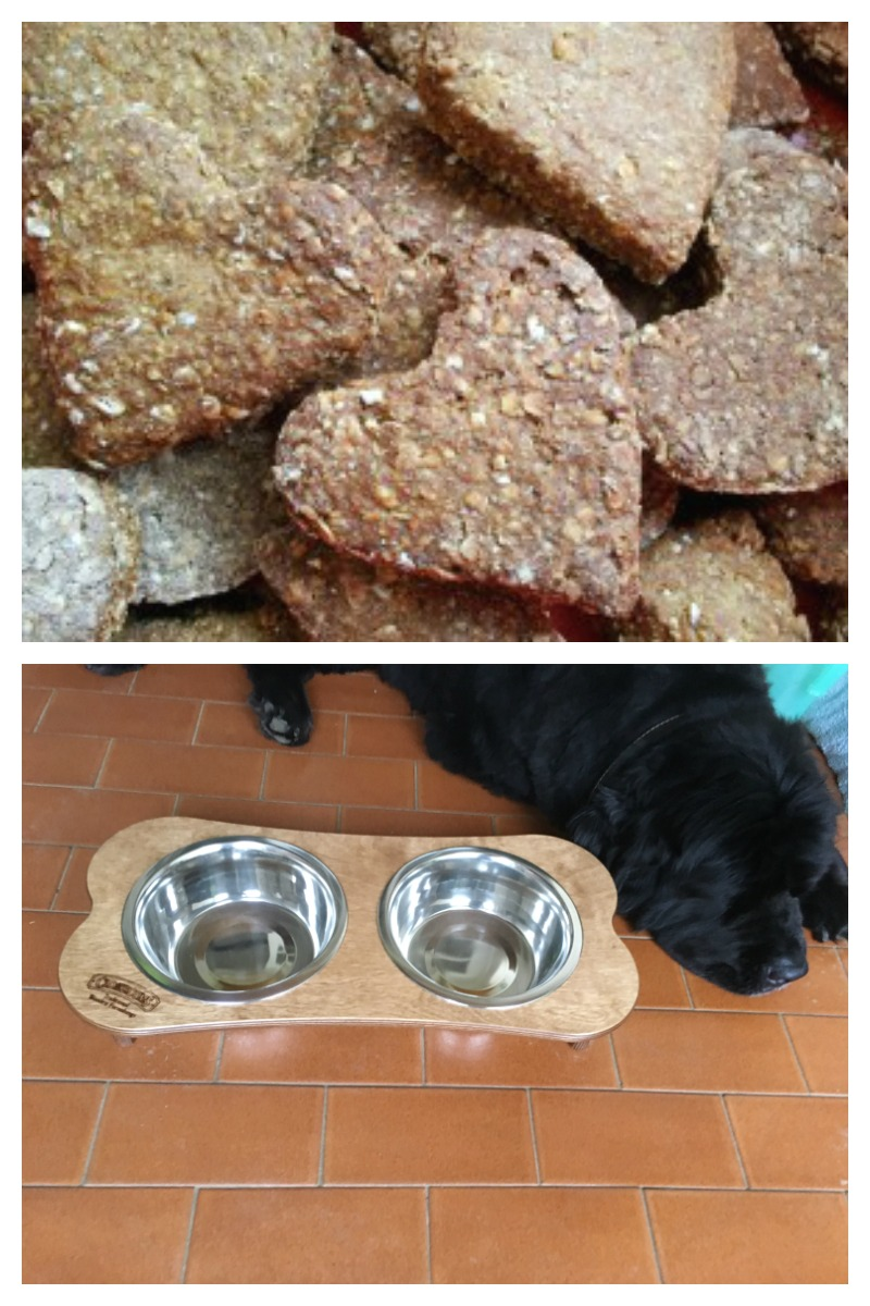 Honey Hearts Homemade Dog Biscuits